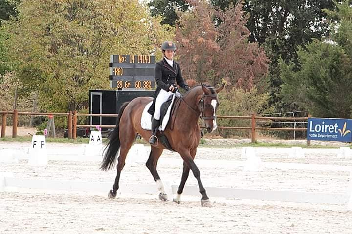 Doris dressage 1* Sandillon